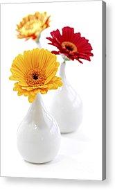 Vase With Flowers Acrylic Prints