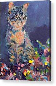 Tabby Cat Acrylic Prints
