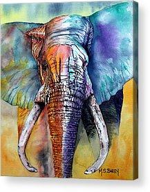 African Elephant Acrylic Prints