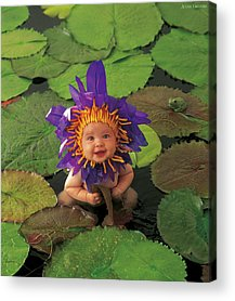 Waterlily Acrylic Prints