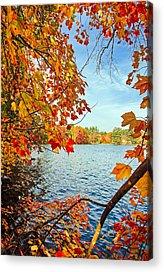 Lake Winnipesaukee Acrylic Prints