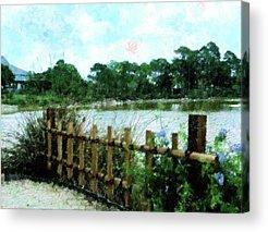 Bamboo Fence Mixed Media Acrylic Prints