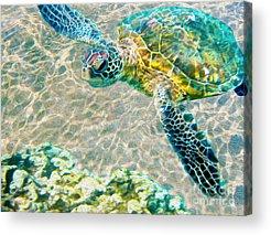 Bahamas Acrylic Prints
