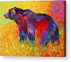 Alaska Paintings Acrylic Prints