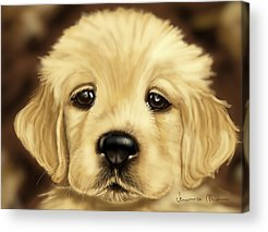 Dog Close-up Paintings Acrylic Prints