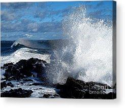 Surfing Maine Acrylic Prints