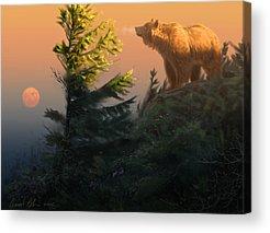 Bear Acrylic Prints