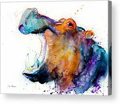 Hippopotamus Acrylic Prints