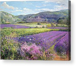 Rural Scenes Acrylic Prints