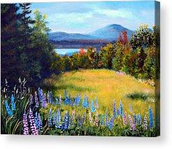 Maine Meadow Paintings Acrylic Prints