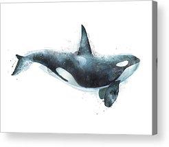 Whale Acrylic Prints