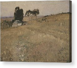 A Summer Evening Paintings Acrylic Prints