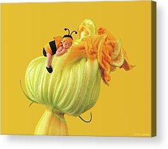 Bees Acrylic Prints