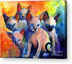 Cat Artwork Acrylic Prints