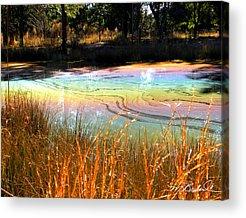 Oil Slick Digital Art Acrylic Prints