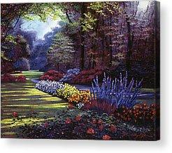 Foxglove Flowers Acrylic Prints
