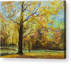 Abstract Realist Landscape Acrylic Prints
