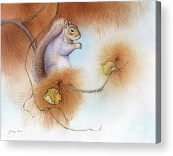 Squirrels Acrylic Prints