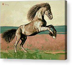 The Horse Mixed Media Acrylic Prints