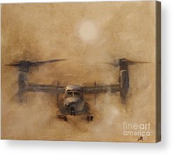 Formation Flying Acrylic Prints