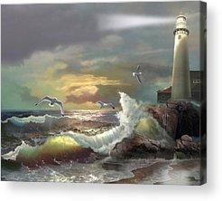 Seagulls Acrylic Prints