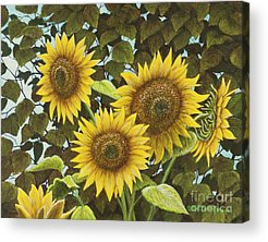 Relaxing Paintings Acrylic Prints