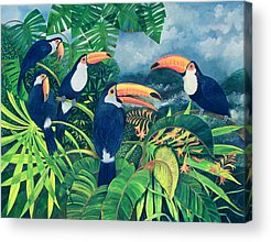 Flocks Of Birds Acrylic Prints