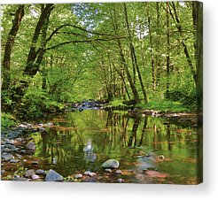 Wilson River Acrylic Prints