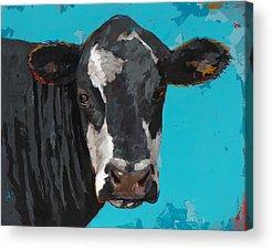 Farm Animal Acrylic Prints