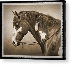 War Pony Acrylic Prints