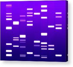 Molecule Acrylic Prints