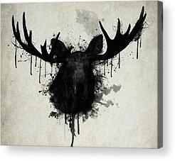 Antlers Acrylic Prints
