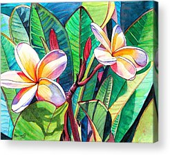 Tropical Flowers Acrylic Prints
