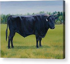 Kobe Beef Acrylic Prints