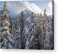 Big Cottonwood Canyon Acrylic Prints