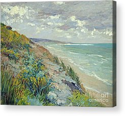 Coast Acrylic Prints