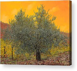 Olives Acrylic Prints