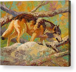 Prowler Paintings Acrylic Prints