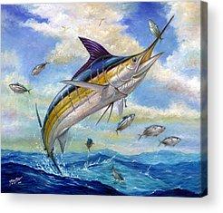 Billfish Acrylic Prints