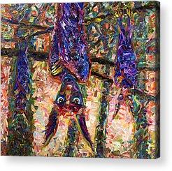 Bat Acrylic Prints