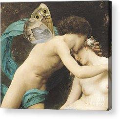 Butterflies On Flowers Acrylic Prints