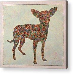 Abstract Dog Acrylic Prints