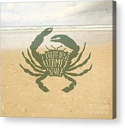 Hermit Crab Acrylic Prints