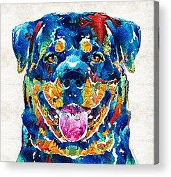Rottweiler Acrylic Prints