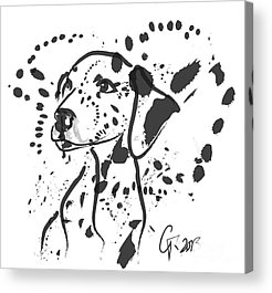 Dog Abstract Art Acrylic Prints