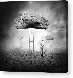 Ladder Acrylic Prints