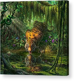 Jungle Acrylic Prints