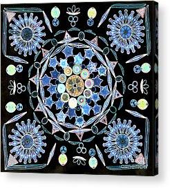 Diatom Photographs Acrylic Prints