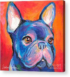 Puppy Acrylic Prints