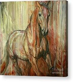 Gallop Paintings Acrylic Prints